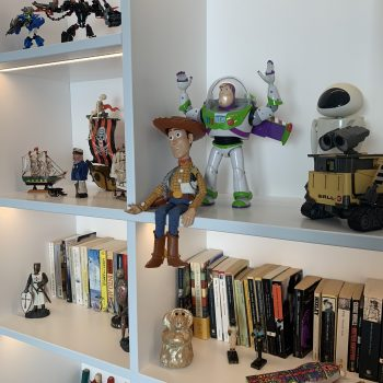 Woody and Buzz from Toy Story sitting on a beautiful hand made bookcase