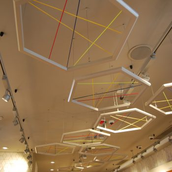 Feature Ceiling Joinery