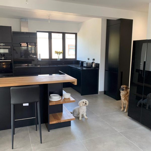 Kitchen with two dogs posing for the camera